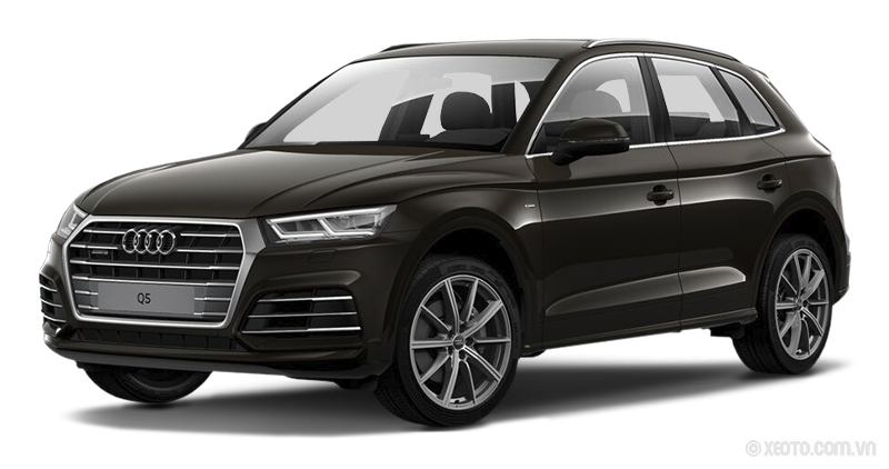 Audi Q5 2020 Màu Java Brown