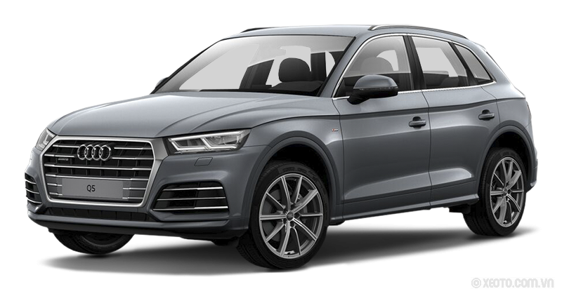 Audi Q5 2020 Màu Monsoon Grey