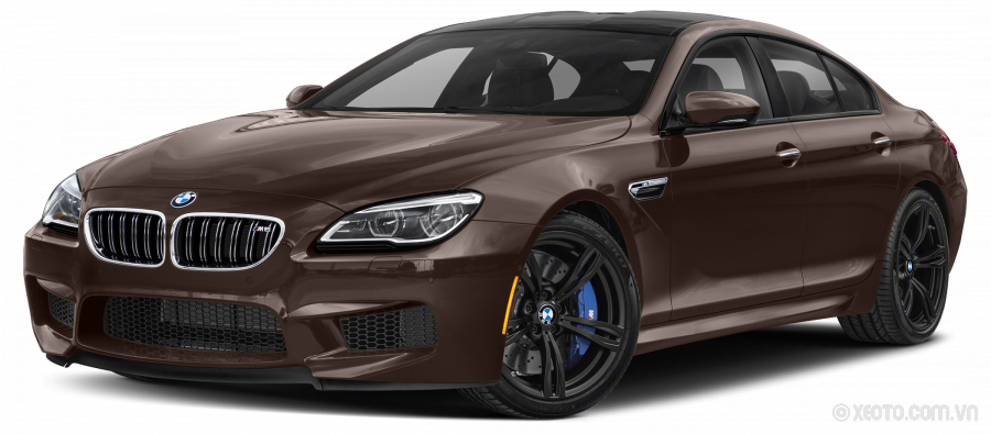BMW M6 2020 Màu Frozen Bronze Metallic