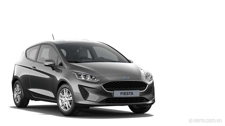 Ford Fiesta 2020 Màu Magnetic-Grau Metallic
